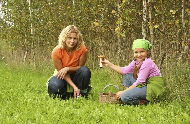 Trucs et astuces pour distinguer les bons des mauvais for 1001 trucs et astuces pour le jardin