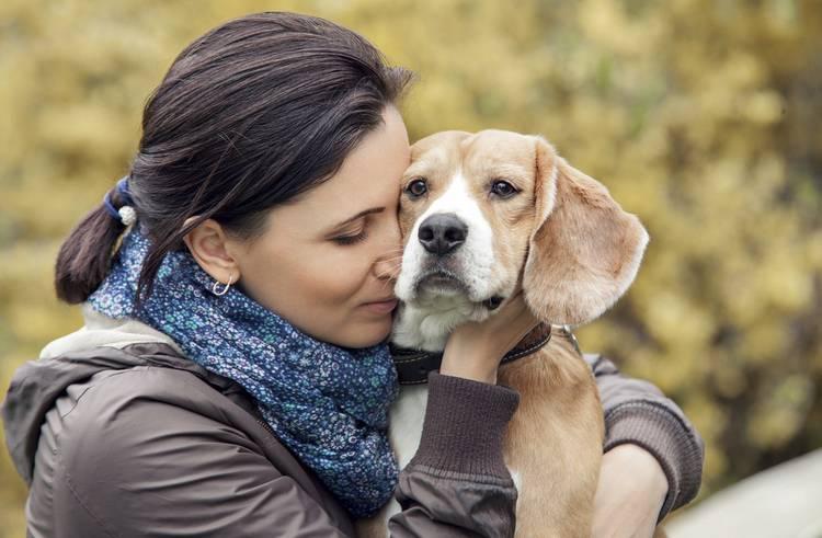 Pin de Hack Life em Les chiens les plus mignons